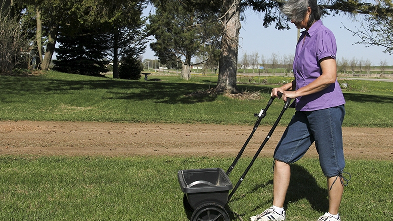 woman fertilizing her lawn with a spreader